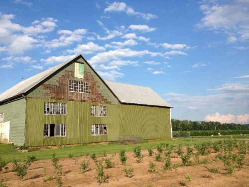 The front side of the green barn in the summer 2014.