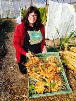 Karen with first harvest of turmeric Nov 2014