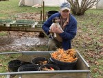 Annie helping with winter Turmeric harvest