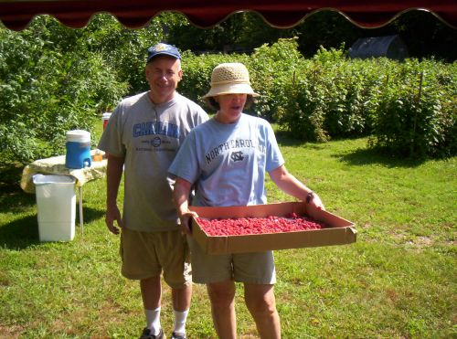 Tarheel Berry Pickers