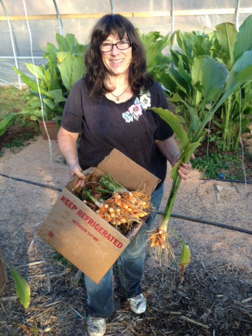 Karen with Harvested Turmeric