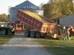 Dumping soybeans into the grain bin