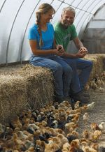 Mike and Gayle with baby chicks