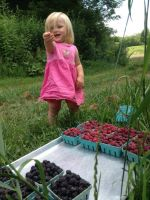 Iyla picking raspberries