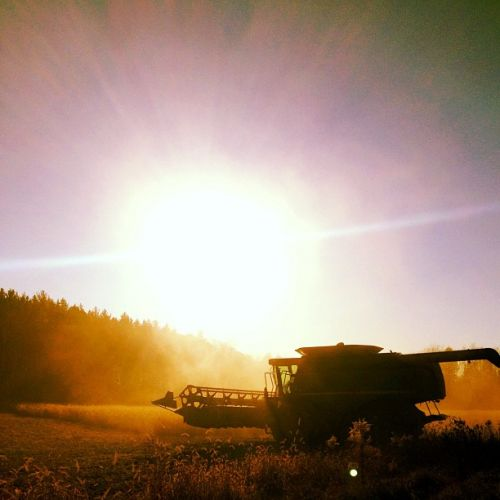Combining during harvest