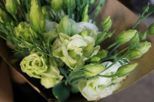 Green and white lisianthus