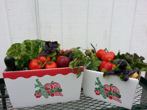 Jersey Fresh Box Program