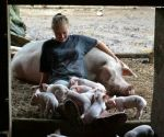 Playing with PigPig's babies