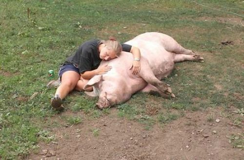 Cuddling with PigPig