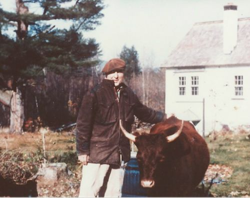 Trauger Groh (in the early days) with a Milking Devon.