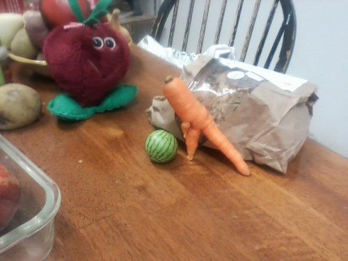 Carrot tries to pick up a watermelon while Beetie watches. 2017 Vegetable of the Year award winner.