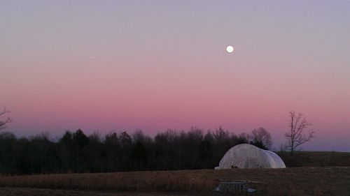 Moonrise over Lazy Dog Farms Greenhouse