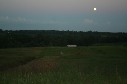 Pasture and Moon