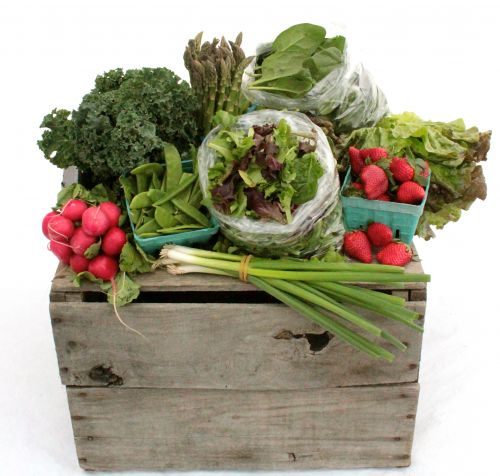 Sample Spring CSA Box