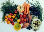 Fall 2015 Vegetable Share
