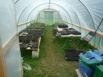 The greenhouse in spring of 2013