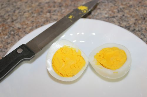 What a free range egg yolk should look like