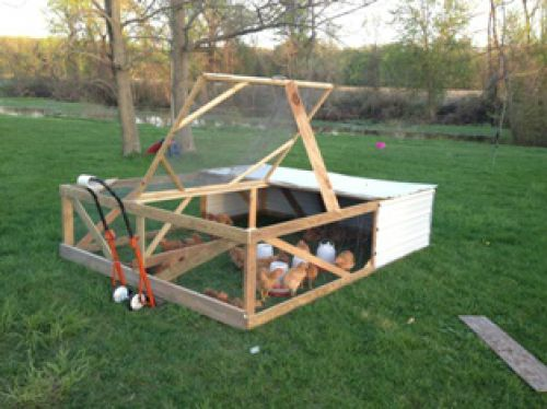Chicken tractor, built by Shane