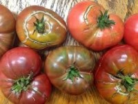 NO. 2 Heirloom Tomatoes