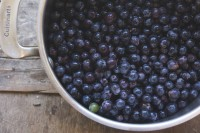 Concord Seeded Grapes - 1 lbs