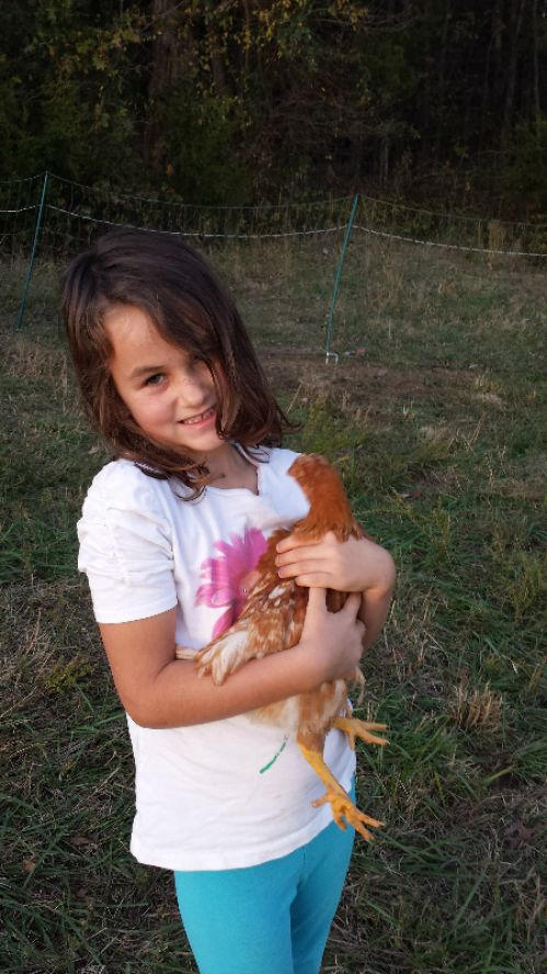 BFF Chicken Love!