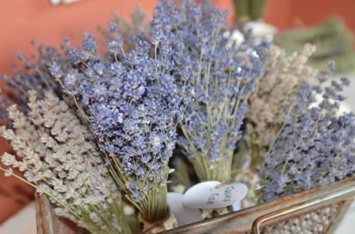 Lavender In Bunches