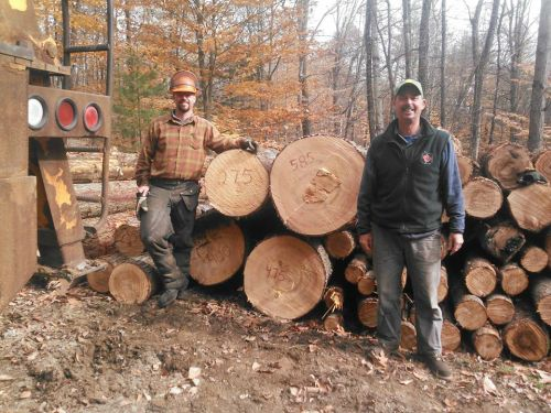 Tyler and Van Logging Fall 2014