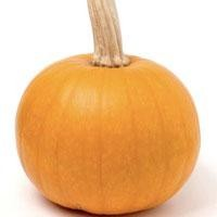 Seeds: Small Sugar Pumpkin