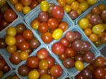 Delicious and Sweet Cherry Tomatoes