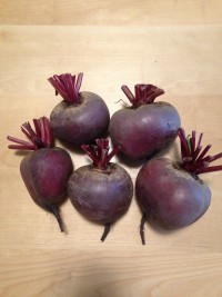Beets: Provence Red, no tops