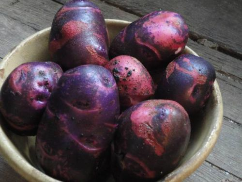 Marbled potatoes