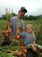 Sean and Ginger harvesting onions.