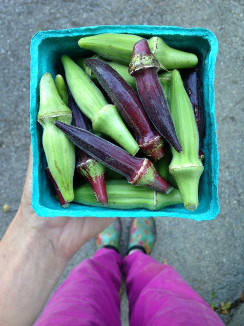 Mixed okra.