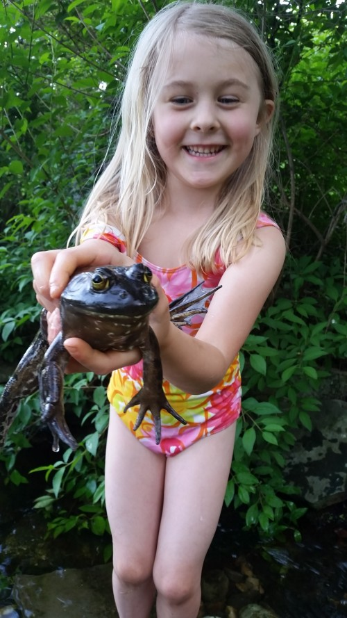 Ginger with Big Papa, our pond frog.