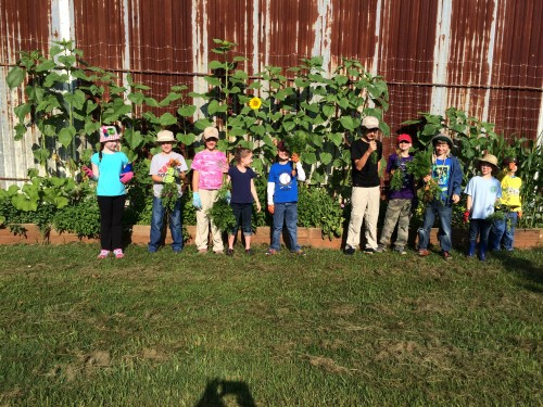 Kids Farm Camp
