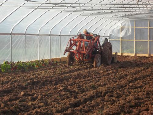 Tilling in the High Tunnel