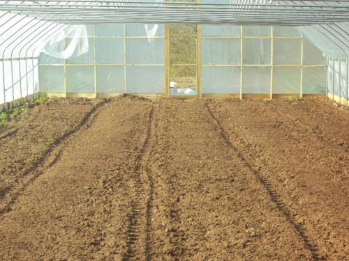 Finished Beds in New High Tunnel