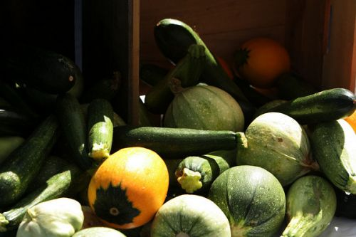 Full array of yummy summer squash - photo by permission of Karl Gary and Greenbelt Farmers Market
