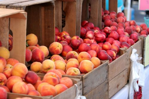 Brimming crates of peaches and nectarines - photo by permission of Karl Gary and Greenbelt Farmers Market