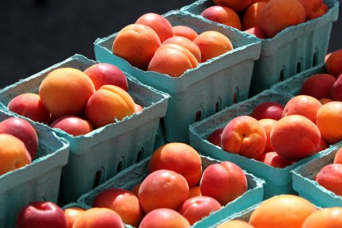 seriously sweet apricots! - photo by permission Karl Gary and Greenbelt Farmers Market