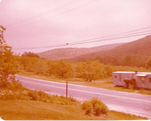 3Springs in the 1970's