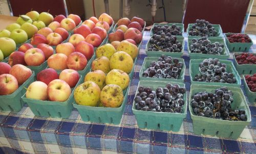 local fruit at Saturday market