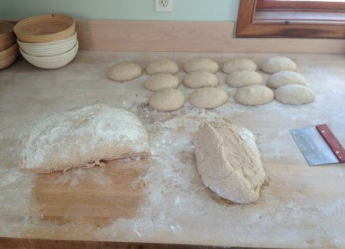 proofing the loaves (2nd rise)