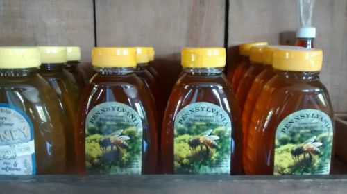 local raw farm honey