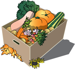 Fall box of veggies