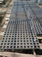 Sown Vegetable Flats