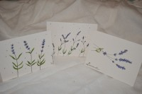 6/27/19 Lavender Greeting Cards 2-4 pm