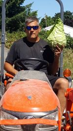 We grow big cabbages over here. This Murdoc cabbage weighed in at over 7lbs!