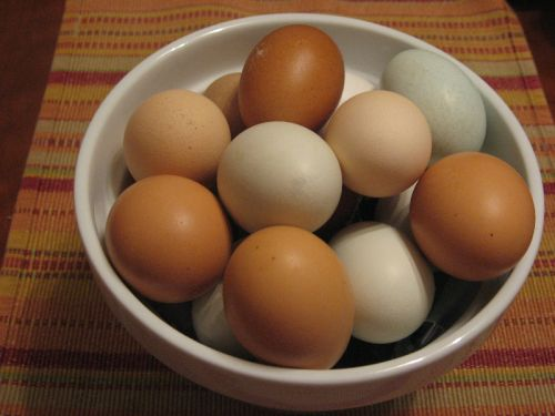 Farm fresh eggs from free-range hens