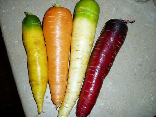 Fabulous carrots
